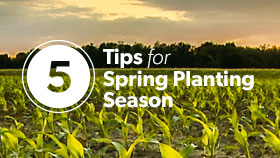 5 Tips for Spring Planting Season