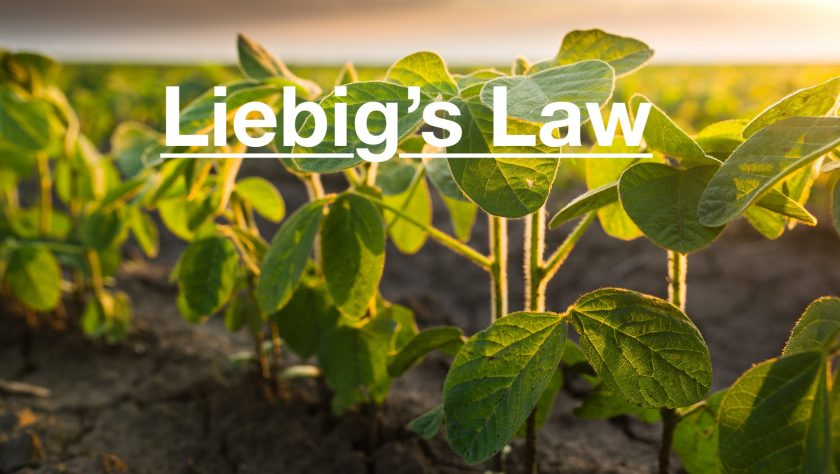 Liebig's Law of the Minimum