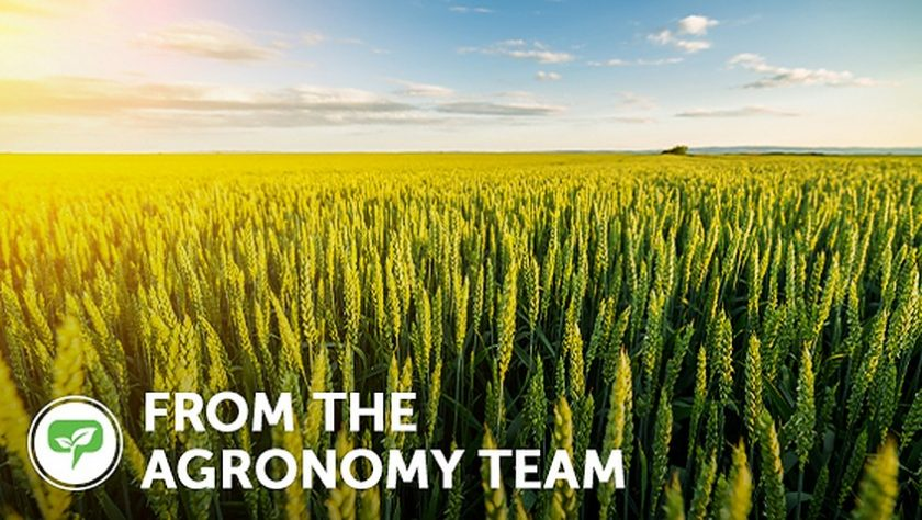 From the agronomy team
