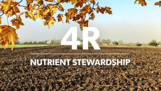 Dealing with Spatial Variability in Nutrient Management