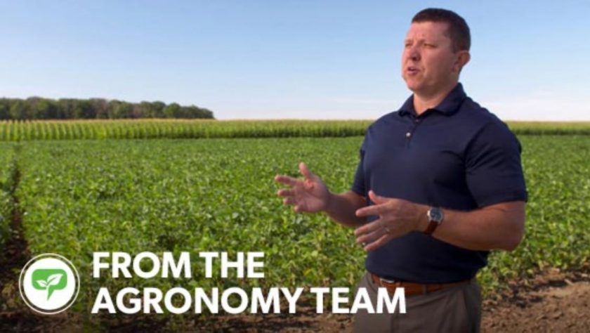 Webinar: Managing Phosphorus and Potassium On Soybean By Soil Test Level
