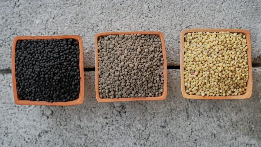 Variations in phosphate fertilizer color